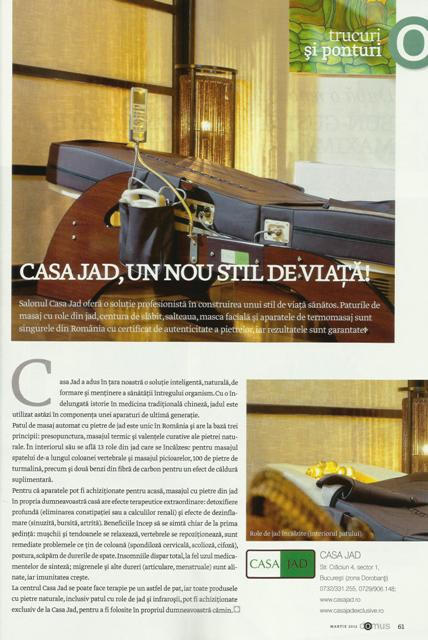 DOMUS articol MARTIE 2012 web